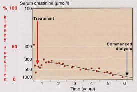 Kidney Creatinine Chart Chronic Renal Failure And Its Progression Ckd Edren Org