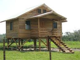 house plans on stilts or cabin on stilts love this small cabin on stilts 84 tiny