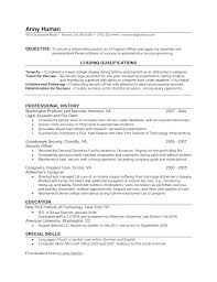Summary For Resume Simple Summary For Resume Examples Skills Summary Resume Sample Resume