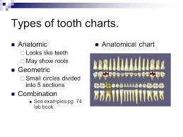 Dental Charting Key Dental Charting Ppt Video Online Download