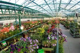 Pasquesi Home And Garden