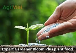 expert gardener bloom plus plant food
