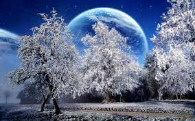 Image result for free winter images