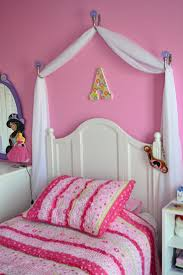 Amusing Princess Canopy Bed Curtains Images Decoration Ideas