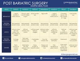 Post Bariatric Surgery Eating Healthy Meal Plan Sample