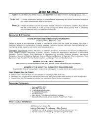 Cv Example Internship Experience Resume Template For Affiliation