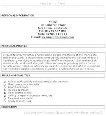 Professional Profile In Resumes Resume Examples Professional Profile Of Statements For Resumes E