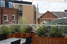 Small Picture Roof Garden design London Garden Club London