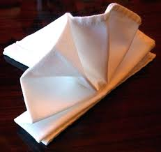 Paper Napkin Folding Flower Lotus Napkin Fold Serviette Lotus Just One Folding Cloth