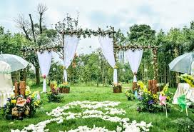 Wedding Photo Background Wedding Photography Backdrops Outdoor Lawn Pink Rose Background