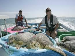 Environmental Protection Worker Texas Aquatic Science