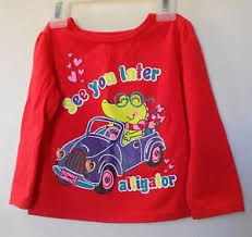 Details About Garanimals Toddler Girls Red Long Sleeve Pull Over Top Size 18m