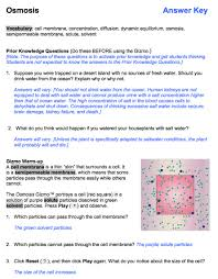 Publisher, or authors of guide you truly want, you can discover them rapidly. Gizmo Student Exploration Sheet Answers Ebooks Pdf Pdf Induced Info