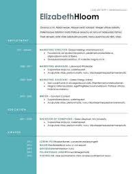 blue side resume template doc resume templates