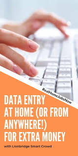 Virtual Bee: Work From Home Data Entry