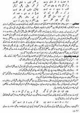 essay in urdu language on allama iqbal research paper service allama iqbal essay in urdu language saglik store