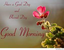 Good Morning Friends Wallpapers For ...