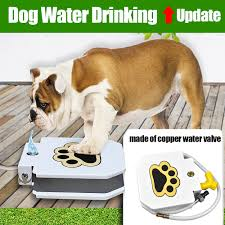 automatic step spray dog pet paw pedal water fountain drinking feeder outdoor oz