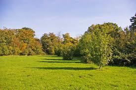 Trent Park