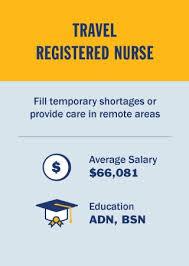 Adn Vs Bsn Infographic Types Of Nurses Job Descriptions Salary Snhu