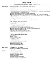 Operations Head Resume Samples Velvet Jobs