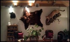 hanging a bear rug