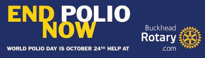 essay on polio