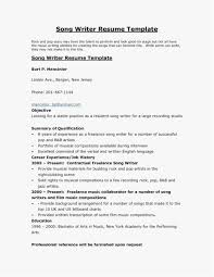 Resume Services Denver Template Awesome 23 Lovely Resumes Writing