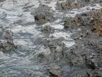 modder