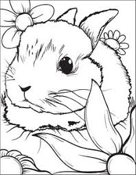 Of Cute Baby Bunnies Free Coloring Pages On Art Coloring Pages