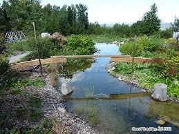 pond bridge framing woodworking free plans build a bridge over a pond