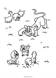 Kleurplaat Poes Besluipt Vogeltjes Dieren