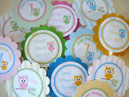 Owl Balloon Decorations Owl Baby Shower Decorations Etsy