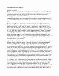 Statement Of Purpose Graduate School Example Grad School Essays Samples Offers Tips On Writing Statement