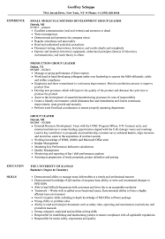 Group Leader Resume Example Group Leader Resume Samples Velvet Jobs 23