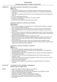 Sample Access Management Resume Identity Management Architect Resume Samples Velvet Jobs 24