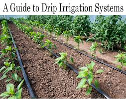 a guide to drip irrigation systems