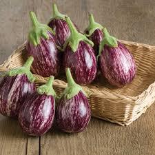 Calliope F1 Eggplant Seed