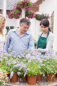 the best garden centres near you in and