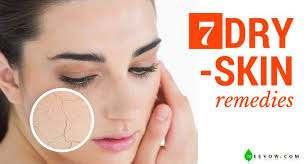 dry skin home remes to cure dry skin on face overnight moisturizer for dry face remes for itchy skin dryness how to fix dry skin on face