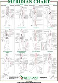 the international academy of reflexology & meridian therapy products Meridian Lines Body Map Meridian Lines Body Map #43 meridian lines body map