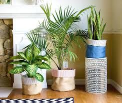 office flower pots. Terrific Contemporary Office Indoor Plant Pots Flower O