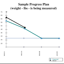 Sample Progress Plan In The Gantt Chart Used As Our Example