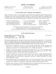 Resume For Sales Representative Sources Coloring Pages