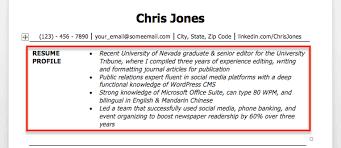 Resume Profile Examples Pusatkroto Com