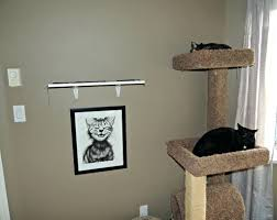cat climbing shelves diy floating astrophicreations cat wall shelves diy for cat shelves for walls uk climbing