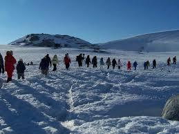 Resultado de imagen para turismo en la antártida