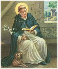 Image result for st dominic's dog