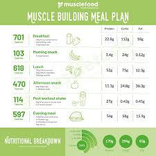 Muscle Gain Workout Chart The Ultimate Muscle Building Meal Plan
