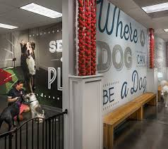 Corporate office interiors Creative Modern Corporate Office Interior Design And Architecture Colorado Pinterest Camp Bow Wow Corporate Headquarters Interior Design Colorado Elsy